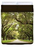 Charleston Avenue Of Oaks Duvet Cover