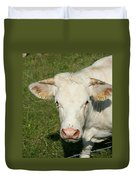 Charolais Cow Duvet Cover