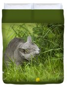 Chartreux Cat And Grass Duvet Cover