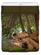 Cheakamus Lake Rainforest - British Columbia Duvet Cover