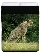 Cheetah-79 Duvet Cover