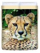 Cheetah Stare L Duvet Cover