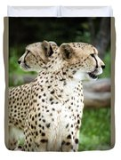 Cheetah's 04 Duvet Cover
