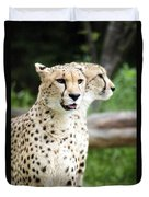 Cheetah's 05 Duvet Cover