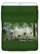 Cheetahs-120 Duvet Cover
