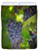 Chelan Blue Grapes Duvet Cover
