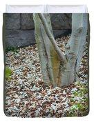 Cherry Blossoms 2013 - 002 Duvet Cover