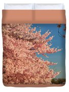 Cherry Blossoms 2013 - 013 Duvet Cover