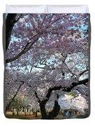 Cherry Blossoms 2013 - 044 Duvet Cover
