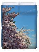 Cherry Blossoms 2013 - 046 Duvet Cover
