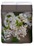 Cherry Blossoms 2013 - 068 Duvet Cover
