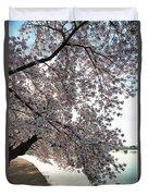 Cherry Blossoms 2013 - 092 Duvet Cover