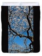 Cherry Blossoms And Sky Duvet Cover