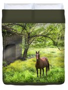 Chestnut Horse In A Sunny Meadow Duvet Cover
