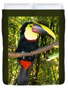 Chestnut Mandibled Toucan Duvet Cover