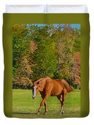 Chestnut Red Horse Duvet Cover