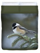 Chickadee Pictures 521 Duvet Cover