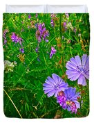 Chicory And Purple Vetch Along Rivier Du Nord Trail In Laurentians-quebec Duvet Cover