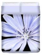 Chicory Flower Macro Duvet Cover