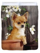 Chihuahua Dog In Flowerpot Duvet Cover