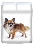 Chihuahua Dog Duvet Cover