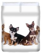 Chihuahuas Dogs Duvet Cover