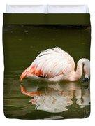 Chilean Flamingo Reflection Duvet Cover