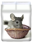 Chinchilla In A Straw Basket  Duvet Cover