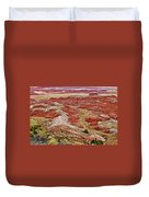 Chinde Point In Painted Desert In Petrified Forest National Park-arizona Duvet Cover