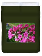 Chinese Apple Blossoms Duvet Cover
