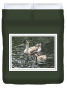Chinese Swan Goose And Gosling Duvet Cover