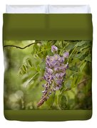 Chinese Wisteria Duvet Cover