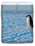 Chinstrap Penguin Duvet Cover
