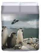 Chinstrap Penguins With Chick Paradise Duvet Cover