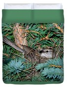 Chipping Sparrow On Nest Duvet Cover