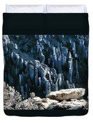 Chiricahua Pinnacles D Duvet Cover