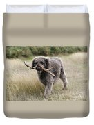 Chocolate Labradoodle Duvet Cover