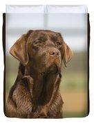 Chocolate Labrador Dog Duvet Cover