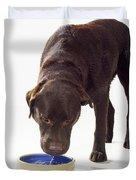 Chocolate Labrador Drinking Duvet Cover