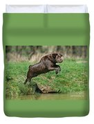 Chocolate Labrador Jumping Duvet Cover