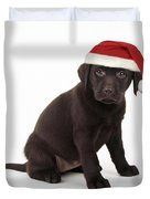 Chocolate Labrador Puppy, 6 Weeks Old Duvet Cover