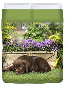 Chocolate Labrador Puppy Duvet Cover
