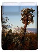 Cholla Cactus View Duvet Cover