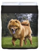 Chow Chow Dog Duvet Cover