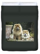 Chow Chow Dogs Duvet Cover