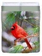 Christmas Cardinal - Male Duvet Cover
