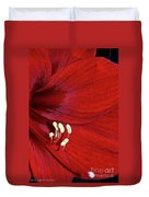 Christmas Red Duvet Cover