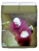 Christmas Tree Worms 2 Duvet Cover