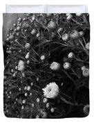 Chrysanthemes Original Duvet Cover