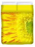 Chrysanthemum Flower Closeup Duvet Cover